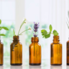 Top 10 Essential Oils That Can Relief Allergies