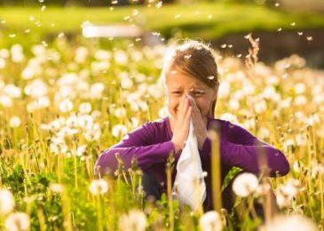 Seasonal Allergies Symptoms: Simple Things To Do To Avoid Them