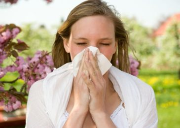 Seasonal Allergies, Myths and Facts You Should Know About