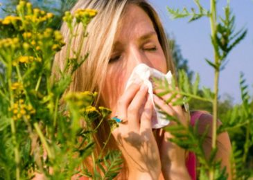Tips to fight against pollen allergies
