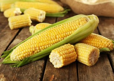 Corn Allergy: Threats From Every Side