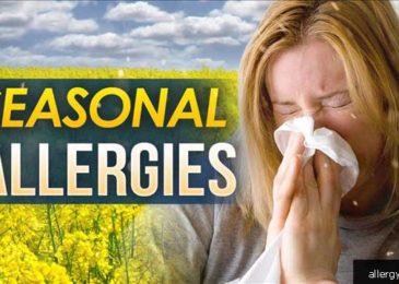 12 Tips For Managing Seasonal Allergies